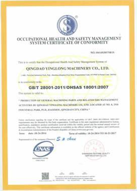 OHS Management System Certificate